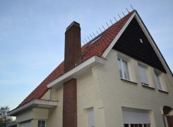 dak-kapellen-2.jpg